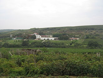 """Moldovan wine - The Purcari winery surrounded by its vineyards. The vineyard in the forefront is a """"village"""" vineyard used for home-made wine"""
