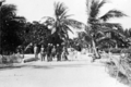 Queensland State Archives 5760 Hon J C Peterson Home Secretary and party with residents of Yorke Island Torres Shire June 1931.png