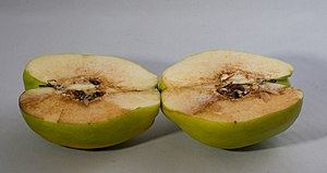 Quince - Halved quince, with seeds and oxidation visible.