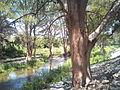 Río La Silla en La Pastora, vista al oriente.jpg