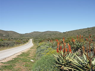 R330 (South Africa) road in South Africa