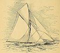 Races for the America's cup (1893) (14750784686).jpg
