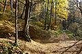 Rešovské vodopády na podzim 01.jpg
