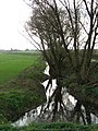 Reflections in drainage ditch - geograph.org.uk - 599468.jpg