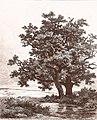 Remigius Adrianus van Haanen 066 (39740394714).jpg