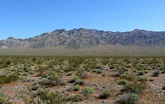 Resting Spring Range - East side of the Resting Spring Range seen from the Mojave Desert.