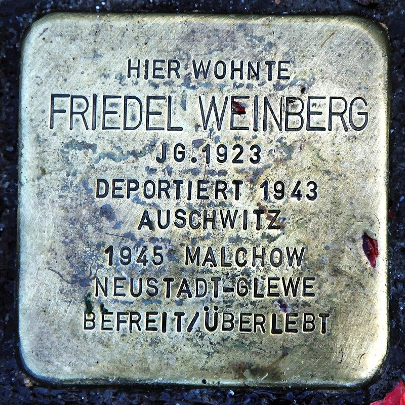 Rhauderfehn - Untenende - 74 - Stolpersteine Weinberg, Friedel 01 ies