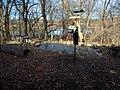 Richardson Nature Center squirrel area.jpg