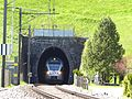 Rickentunnel Wattwil 2016-5.JPG
