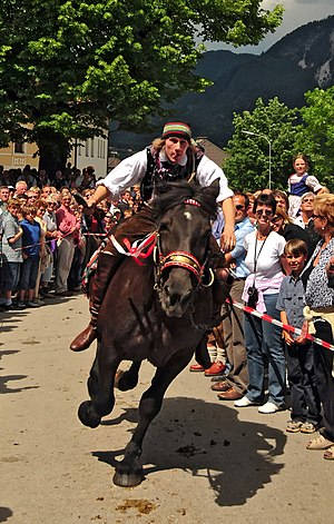 Noriker - The Noriker horse is ridden in the Kufenstechen, part of a traditional folk event in Feistritz an der Gail during the annual Kermesse on Whit Monday, wherein unmarried young men attempt to smash a wooden barrel with an iron