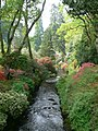 River Hiraethlyn in the Dell at Bodnant Gardens - geograph.org.uk - 804539.jpg