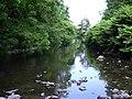 River Irwell at Ewood Bridge - geograph.org.uk - 463572.jpg