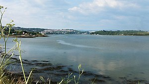 River Plym - View of the River Plym at Laira looking North