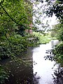River Waveney at Wainford Mill - geograph.org.uk - 221986.jpg