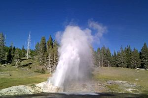 Файл:Riverside geyser yellowstone np 20100825 180055.ogv