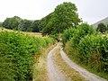Road to Bwlch y Garnedd - geograph.org.uk - 206971.jpg