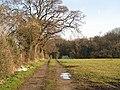 Road to Heir's Wood - geograph.org.uk - 958668.jpg