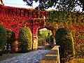 Rocca di Bertinoro in autunno.jpg