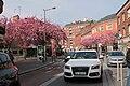 Rue de Beauvais à Amiens.jpg