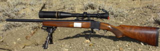 Varmint rifle small-caliber firearm for hunting small animals