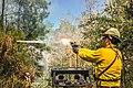 Ryan firing a flare gun (8227481378).jpg