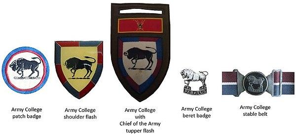 SADF era Army College insignia