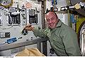 STS132 Reisman fd9.jpg
