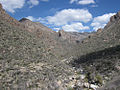Sabino Canyon (5621307376).jpg