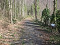 Sacret Way on Monte Cavo 091.jpg