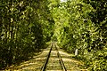 Sadat A-Train-Line.jpg