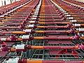 Sainsbury's supermarket shopping trolleys at Chingford, London, England 2.jpg