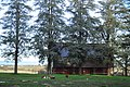 Saint Francis Xavier Mission Cemetery (Cowlitz) - disused building - 03.jpg