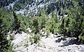 Samaria Gorge, Crete - panoramio (3).jpg