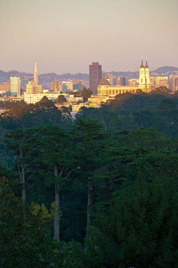 San-francisco-strawberry-hill