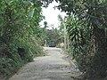 San Jose Las Flores, 2010 - panoramio.jpg