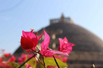 Sanchi stupa 1.jpg