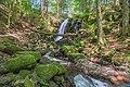 Sankt Blasien Windbergwasserfall Bild 4.jpg