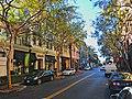 Santana Row (1).jpg