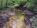 Savasos upe prie Luzu akmens.jpg