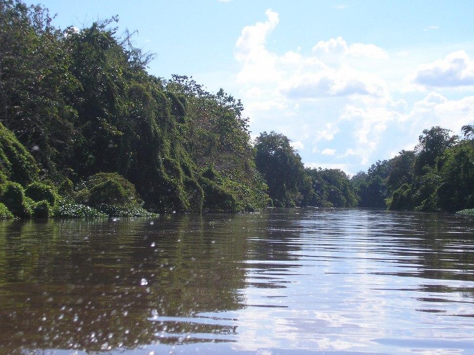 Scenery around Kapuas River