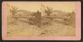 Scenes of destruction from the Catfish Creek flood 1876, Dubuque, Iowa, by Root, Samuel, 1819-1889.png