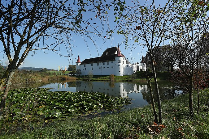 Schloss Wyher through the trees.jpg