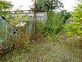 Serres abandonnées - Jardin Agronomique Tropical 2.JPG