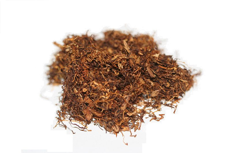File Shag Tobacco 01 Xndr Jpg Wikimedia Commons