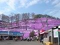 Shibasacra Park,Higashi-Mokoto - panoramio.jpg