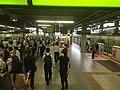 Shinagawa Station Yamanote line platforms with platform doors - 2020 7 20 - 440pm.jpeg