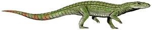 Crocodylomorpha - 80 px