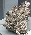 Silver (Mesoproterozoic, 1.05-1.06 Ga; Wolverine Mine, Upper Peninsula of Michigan, USA) 2 (17100315830).jpg