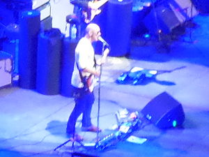 Simon Townshend - Townshend performing live with The Who at Manchester Arena in 2014
