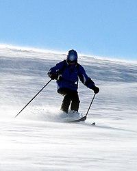 Skilaeufer Alpin.jpg